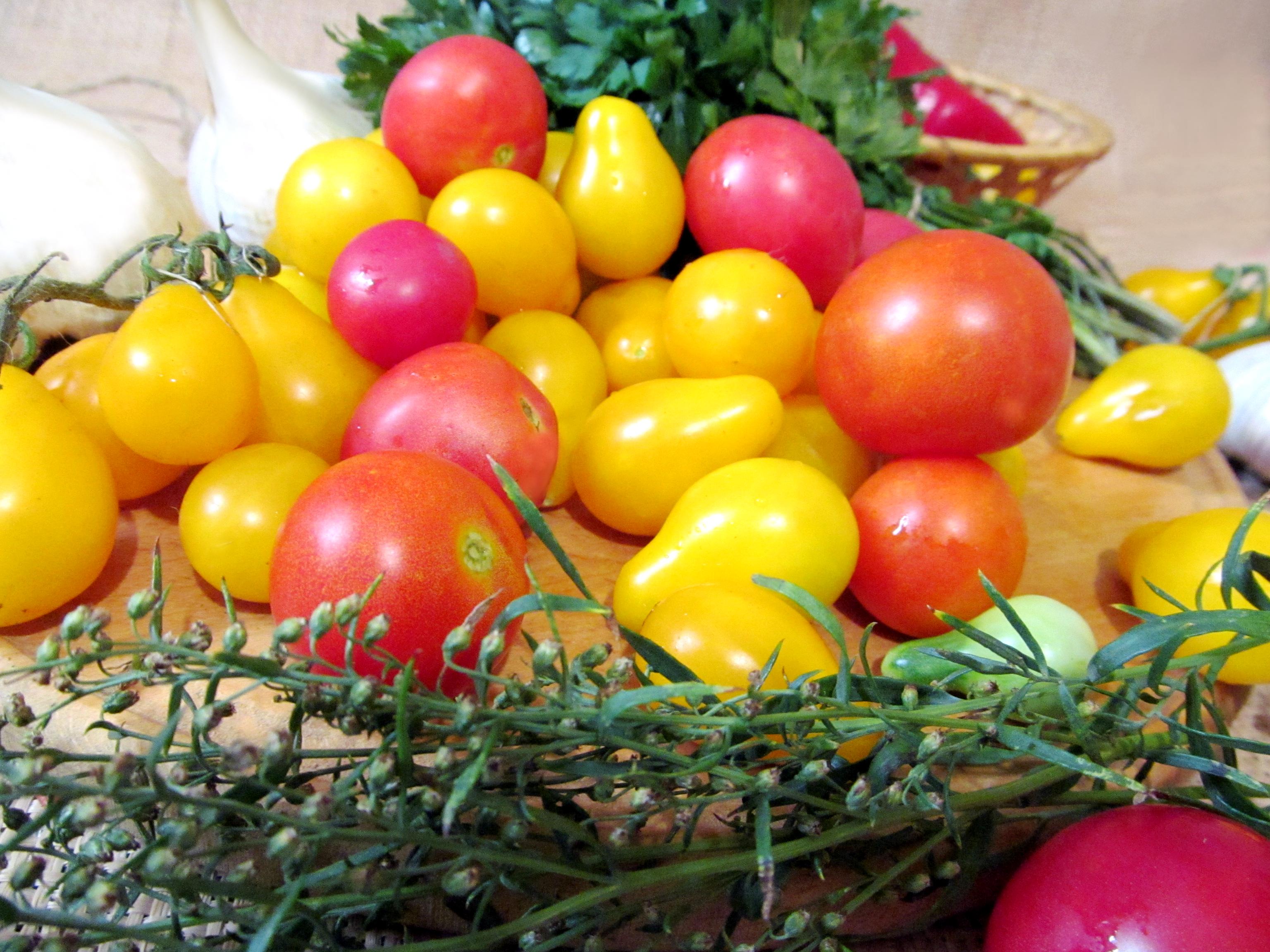 рецепты салата из перца и томатов