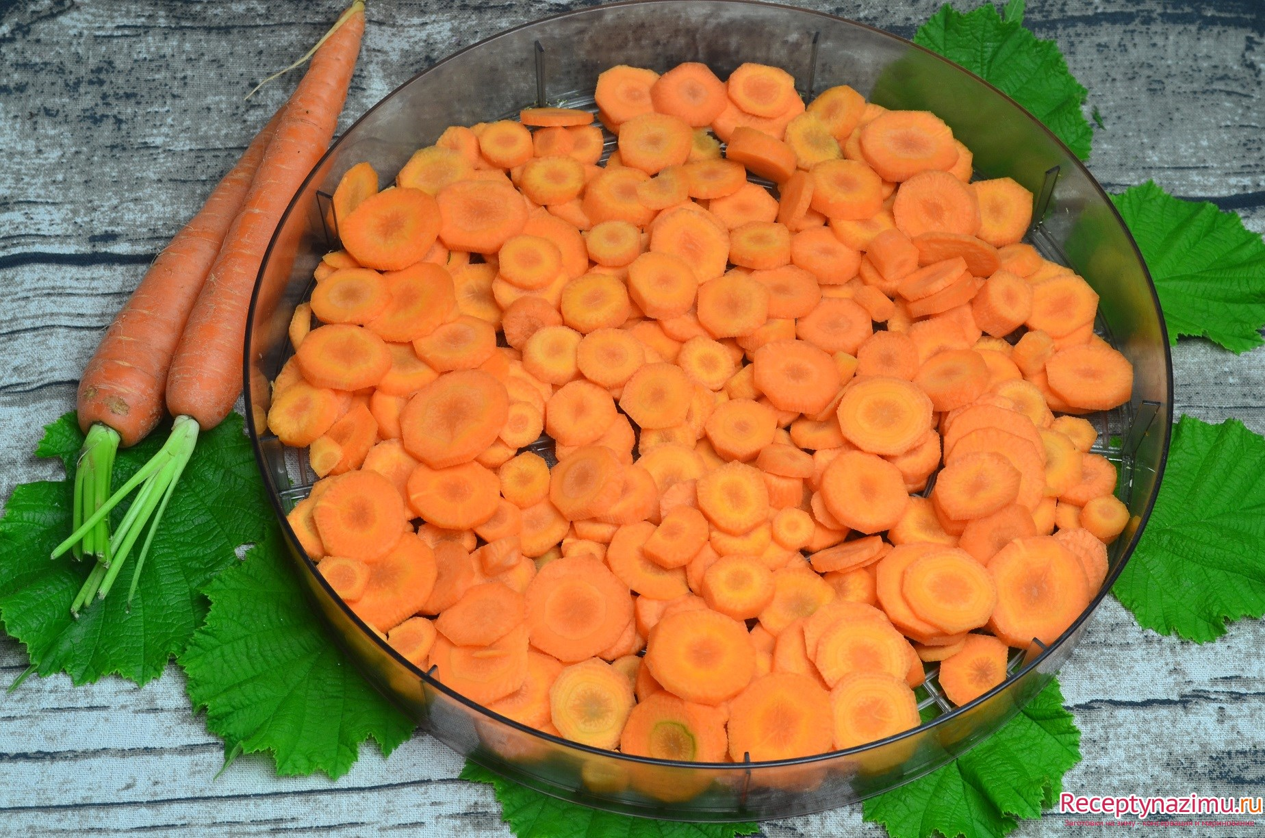 Как в домашних условиях сушить морковь в 408
